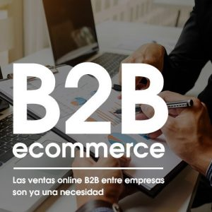 B2B eCommerce - La ventas online B2B ya son una necesidad
